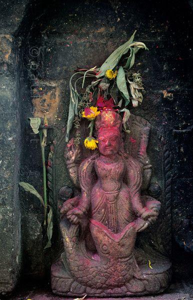 Fish God of Nepal